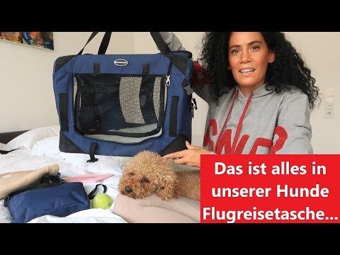 Hunde-Flugreisetasche // Alles für den Flug
