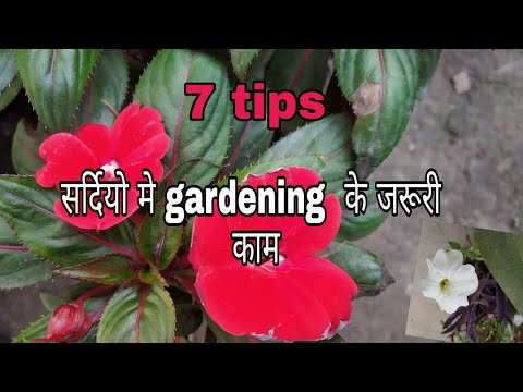 7 Important gardening works to do in winter season (Hindi Urdu)