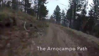 Arnocampo Path - MTB Sila