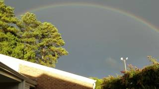 Rainbow with doves flying across this after today's storm