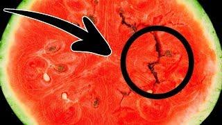 تحميل اغاني اذا وجدت هذا فى البطيخ لا تاكلها وتخلص منها فورا ! MP3