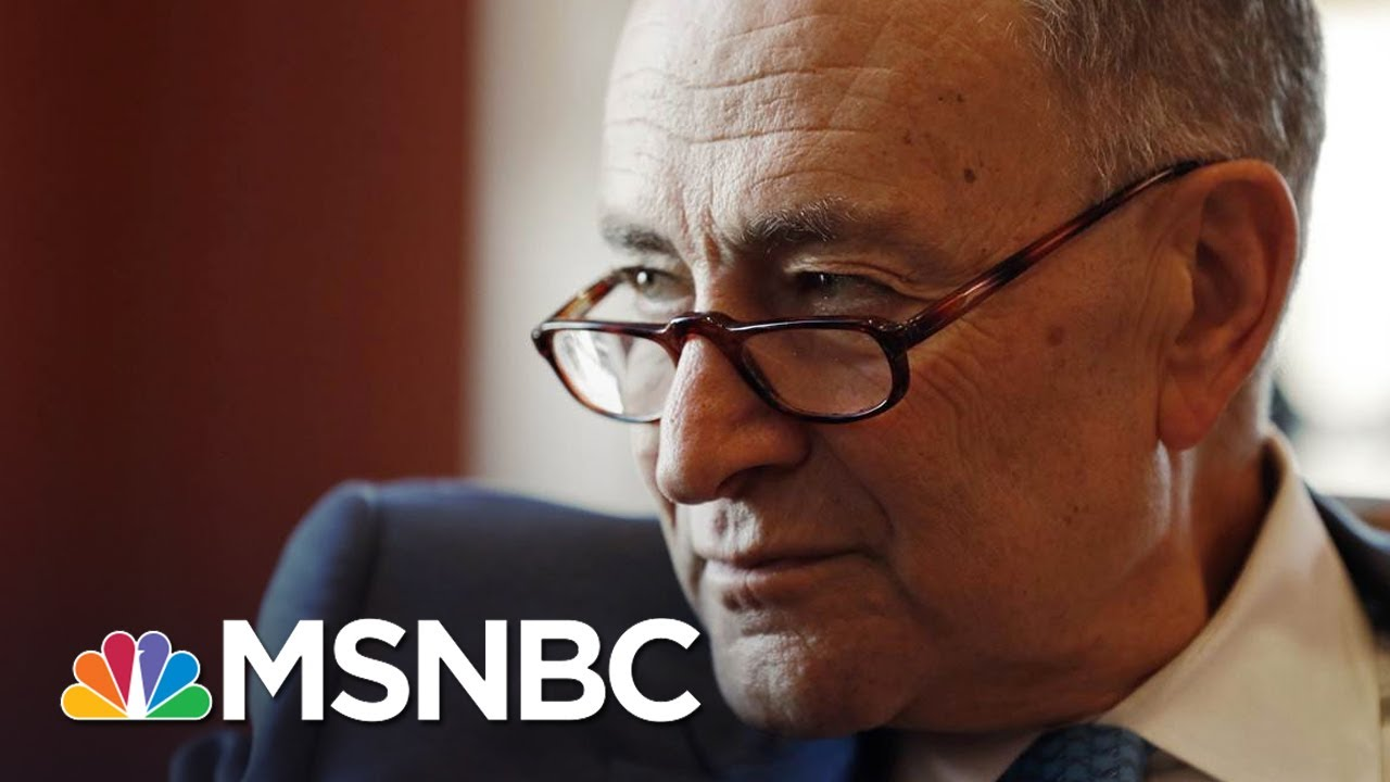 Chuck Schumer Perfectly Lampoons President Donald Trump Cabinet Meeting | All In | MSNBC thumbnail