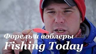 Ловля форели зимой. Рыбалка в Подмосковье. Розыгрыш воблеров - Fishing Today