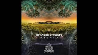Kromagon - Heacy Lohic - (Space Organ RMX)