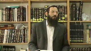 הותרה או דחויה - ביאור שיטת הרב המגיד - הרב אריאל אלקובי שליט''א