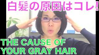 白髪の原因はコレだ!〜生活改善篇〜【メンズビューティVol.41】
