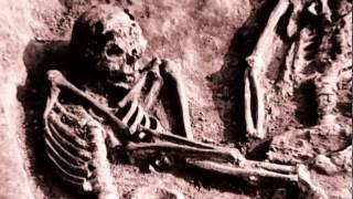 Сексуальная жизнь древних каменный век