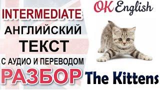 The Kittens 📘 Intermediate text: grammar, vocabulary and listening skills | OK English