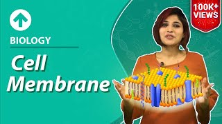 Cell Membrane/Plasma Membrane | Cell-Structure & Function | Biology | Class 9