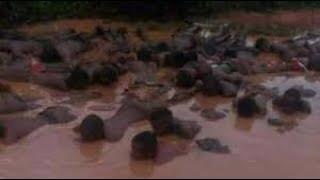The Nigerian Army & the Slave trade(I)
