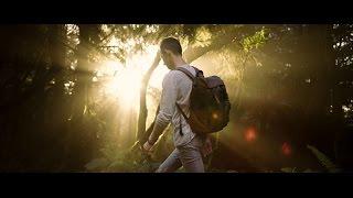 Смотреть онлайн Ролик о природе в формате 8К