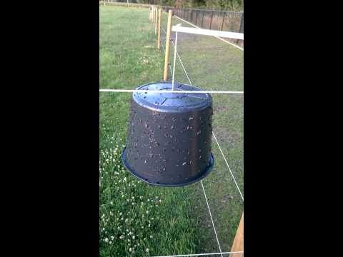 Sample of a outdoor trap with a black bucket