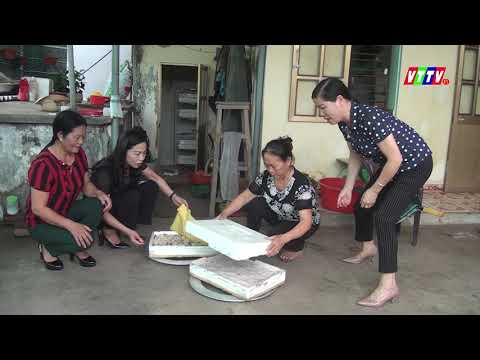 Hội LHPN huyện ra mắt mô hình tổ hợp tác nuôi ốc nhồi tại Hồng Lý