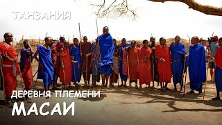 Мир Приключений - Необычный танец племени Масаи. Деревня Масаи. Танзания. Masai dance. Masai village