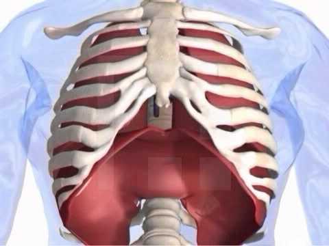 Schmerzen im Nacken von hinten mit der richtigen Behandlung
