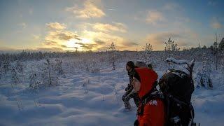Hiking in Estonia | Alam-Pedja Nature Reserve