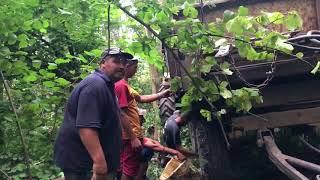 Незаконна порубка лісу в НПП Дністровський каньйон біля с.Копачинці