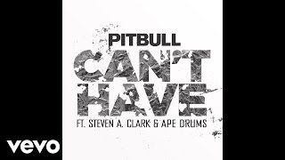 Pitbull & Steven A. Clark & Ape Drums - Can't Have (Audio)