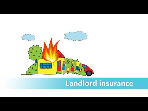 mp4 Insurance Broker Palmerston North, download Insurance Broker Palmerston North video klip Insurance Broker Palmerston North
