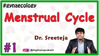 Menstrual Cycle - Part 1
