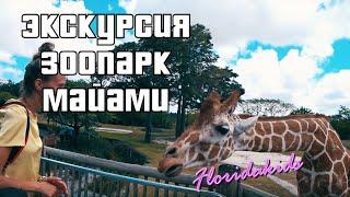 Поездка в зоопарк Zoo Miami