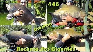 Pescaria de inverno no recanto dos Gigantes - Fishingtur na Tv 446