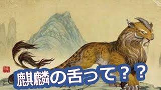 西島秀俊と二宮和也映画『ラストレシピ麒麟の舌の記憶』の「麒麟の舌」って何?