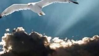 Julio Iglesias-La paloma