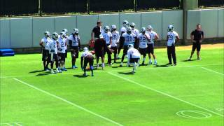 Carolina Panthers shuffle, pedal and run drill: Defensive backs
