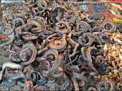กินงูทอดกินหนูย่างตัวใหญ่ ๆ ในพะตะบอง Eating Snake  fried