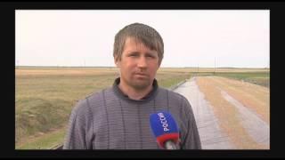 В Бердюжском районе местные жители делают бизнес на пресноводных креветках