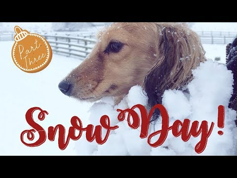 SNOW DAY & Getting Ready For Baby! VLOGMAS Pt. 3