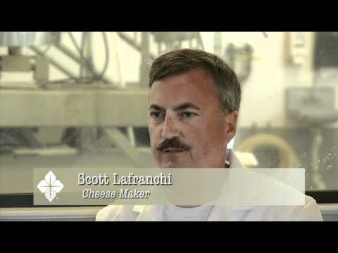 AG EDUCATION SERIES FROM THE DAIRY CHEESE FROM SCR