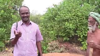 சங்ககால நகரம் ஒன்றை பார்த்திருக்கின்றீர்களா? |THF:மருங்கூர் - சங்ககால நகரம் (பகுதி 2)