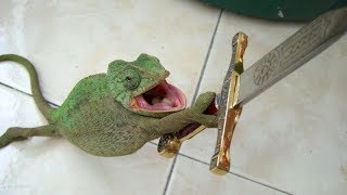 SMALL CUTE DRAGONS Will Make Sure That YOULL LAUGH - The FUNNIEST LIZARD VIDEOS