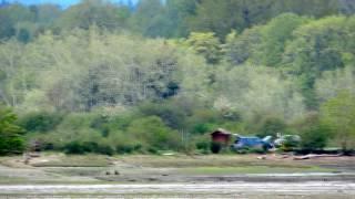 RC Plane Flying on Vancouver Island
