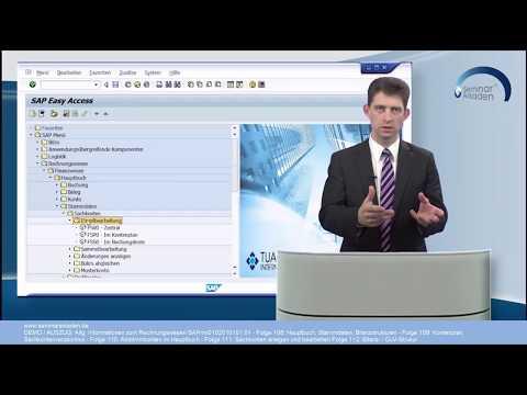 DEMO / Auschnitte SAP Finanzwesen - Allgemeines und Hauptbuch mit den Folgen 108- bis 112