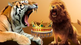 Why isn't TIGER the KING OF THE JUNGLE? - LION VS TIGER