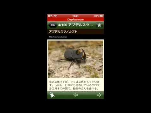 Video of 世界のカブト・クワガタ図鑑