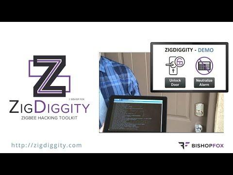 ZigDiggity 2019 DEMO