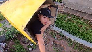NTN - Thử Làm Nhà Trên Không (Build a house in the air)