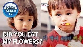 Did you eat my flowers? [The Return of Superman/2020.03.15]