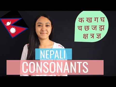 #2 Learn Nepali for Beginners | Nepali Consonants