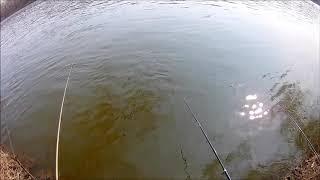 Казачий ерик ростовская область рыбалка август 2020