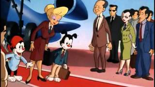 Animaniacs - Hello Nurse