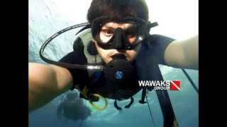 preview picture of video 'Gorontalo Diver with wawaks group (Ied Mubarak Dive)'