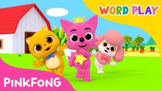 Baby Animals | Word Play | Pinkfong Songs for Children