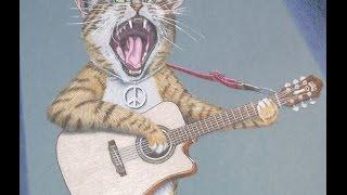 DOC WATSON - SING SONG KITTY