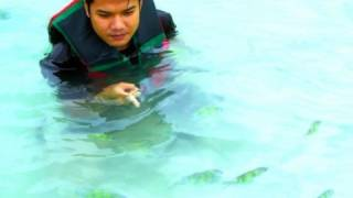 preview picture of video 'Travel to Phuket The Beautiful Beach & Island'