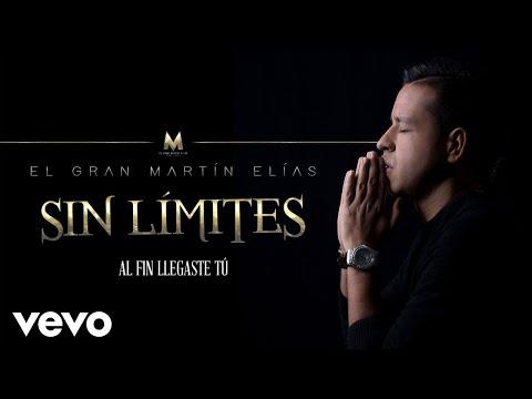 Al Fin Llegaste Tú (cover Audio) Martín Elías